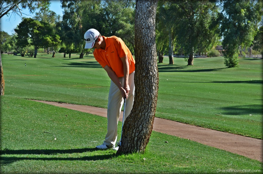 Limited follow through hitting tree front